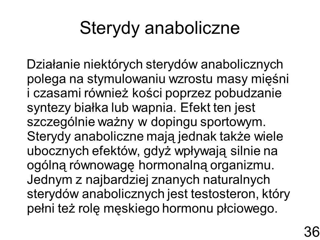 Sterydy anaboliczne Działanie niektórych sterydów anabolicznych polega na stymulowaniu wzrostu masy mięśni i czasami również kości poprzez pobudzanie syntezy białka lub wapnia.