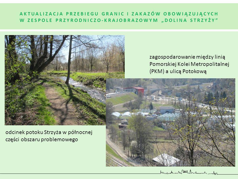 odcinek potoku Strzyża w północnej części obszaru problemowego zagospodarowanie między linią Pomorskiej Kolei Metropolitalnej (PKM) a ulicą Potokową A