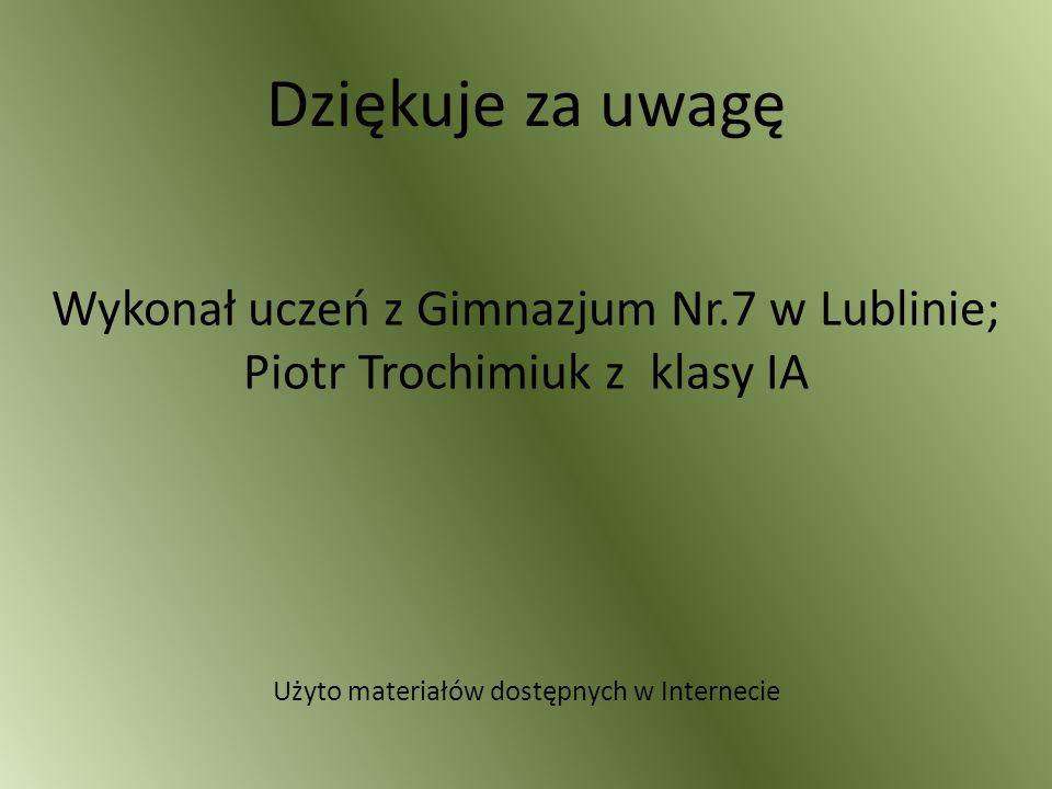 Dziękuje za uwagę Wykonał uczeń z Gimnazjum Nr.7 w Lublinie; Piotr Trochimiuk z klasy IA Użyto materiałów dostępnych w Internecie