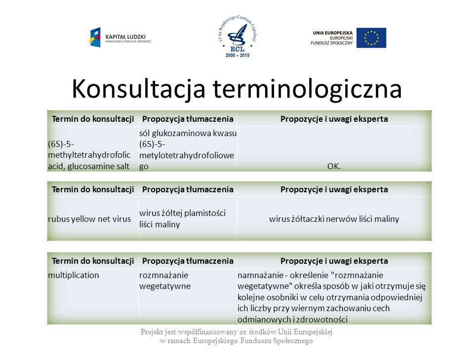 Konsultacja terminologiczna Projekt jest współfinansowany ze środków Unii Europejskiej w ramach Europejskiego Funduszu Społecznego