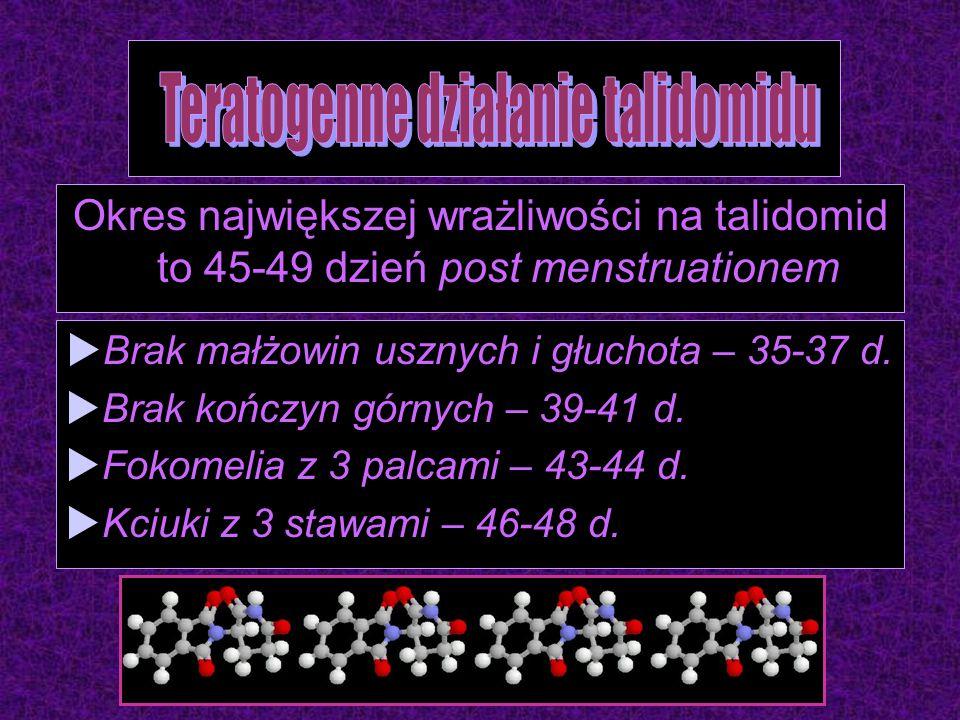 Okres największej wrażliwości na talidomid to 45-49 dzień post menstruationem  Brak małżowin usznych i głuchota – 35-37 d.  Brak kończyn górnych – 3