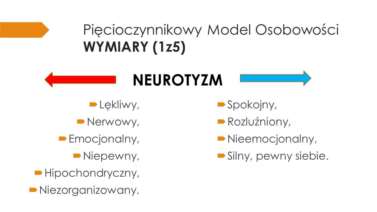 Pięcioczynnikowy Model Osobowości WYMIARY (2z5) jakość i intensywność interakcji międzyludzkich; poziom aktywności; potrzeba stymulacji; zdolność cieszenia się.