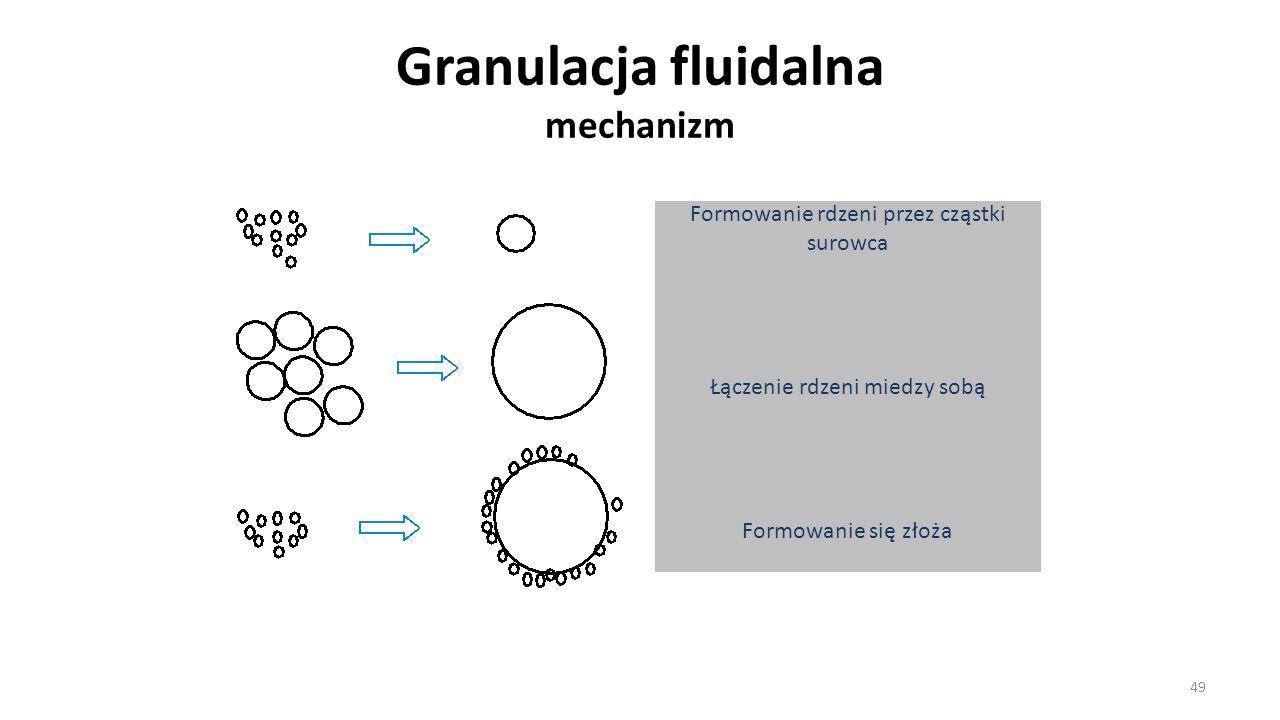 Granulacja fluidalna mechanizm 49 Formowanie rdzeni przez cząstki surowca Łączenie rdzeni miedzy sobą Formowanie się złoża