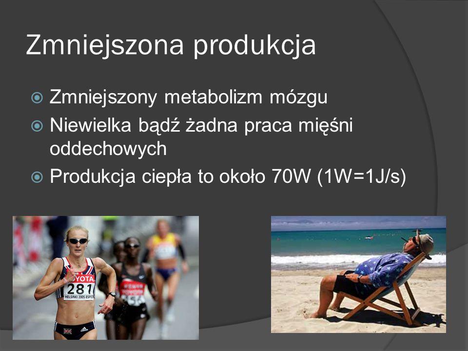 Zmniejszona produkcja  Zmniejszony metabolizm mózgu  Niewielka bądź żadna praca mięśni oddechowych  Produkcja ciepła to około 70W (1W=1J/s)
