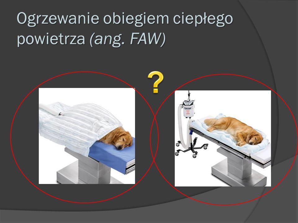 Ogrzewanie obiegiem ciepłego powietrza (ang. FAW)
