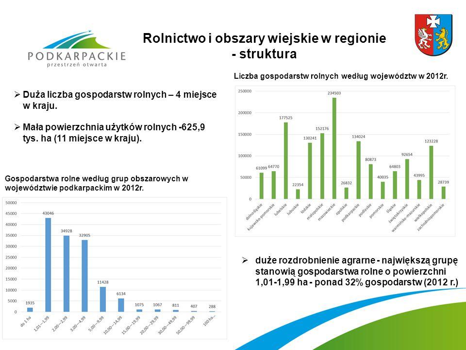 Rolnictwo i obszary wiejskie w regionie - struktura  duże rozdrobnienie agrarne - największą grupę stanowią gospodarstwa rolne o powierzchni 1,01-1,99 ha - ponad 32% gospodarstw (2012 r.)  Duża liczba gospodarstw rolnych – 4 miejsce w kraju.