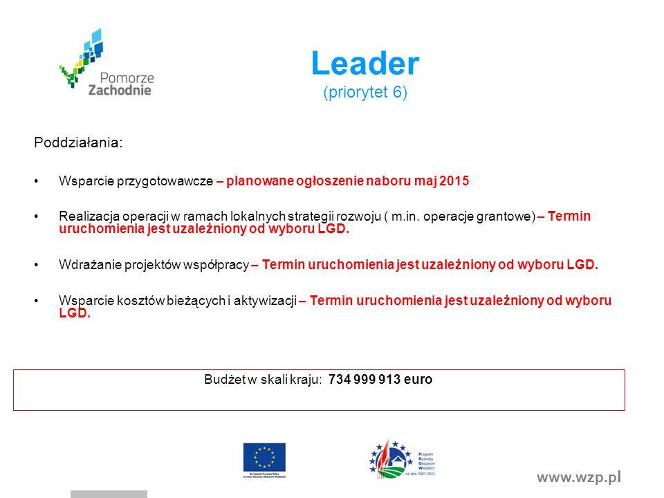 www.wzp.p l Leader (priorytet 6) Poddziałania: Wsparcie przygotowawcze – planowane ogłoszenie naboru maj 2015 Realizacja operacji w ramach lokalnych strategii rozwoju ( m.in.