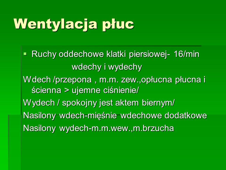 Wentylacja płuc  Ruchy oddechowe klatki piersiowej- 16/min wdechy i wydechy wdechy i wydechy Wdech /przepona, m.m.