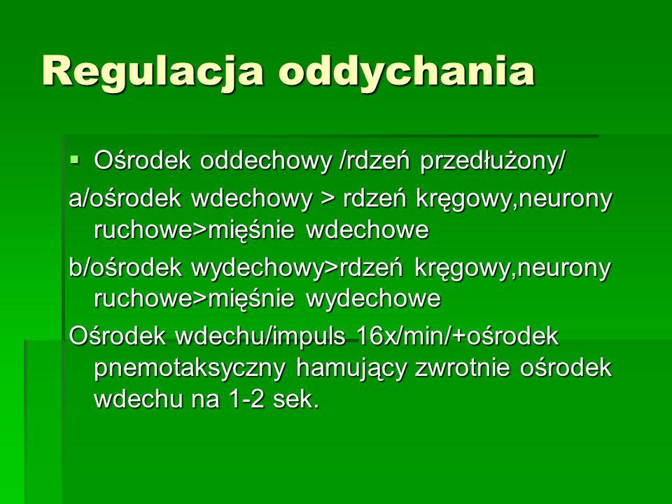 Regulacja oddychania  Ośrodek oddechowy /rdzeń przedłużony/ a/ośrodek wdechowy > rdzeń kręgowy,neurony ruchowe>mięśnie wdechowe b/ośrodek wydechowy>rdzeń kręgowy,neurony ruchowe>mięśnie wydechowe Ośrodek wdechu/impuls 16x/min/+ośrodek pnemotaksyczny hamujący zwrotnie ośrodek wdechu na 1-2 sek.