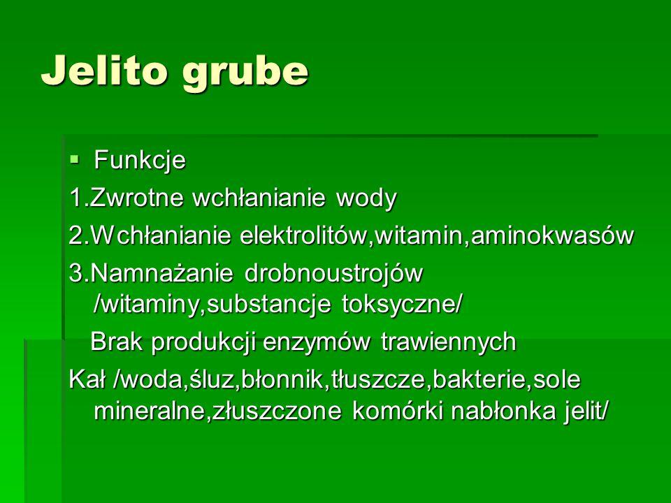 Jelito grube  Funkcje 1.Zwrotne wchłanianie wody 2.Wchłanianie elektrolitów,witamin,aminokwasów 3.Namnażanie drobnoustrojów /witaminy,substancje toksyczne/ Brak produkcji enzymów trawiennych Brak produkcji enzymów trawiennych Kał /woda,śluz,błonnik,tłuszcze,bakterie,sole mineralne,złuszczone komórki nabłonka jelit/