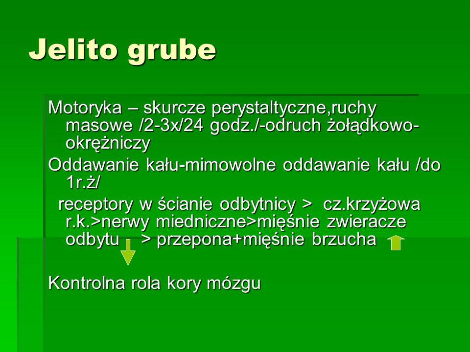 Hormony żołądkowo- jelitowe Produkcja-komórki rozsianego układu wydzielania wewnętrznego żołądka i jelit 1.Gastryna /komórki G/: sok żołądkowy +++ sok jelitowy +, sok trzustkowy +, żółć + sok jelitowy +, sok trzustkowy +, żółć + motoryka: jelita +, żołądek+, pęcherzyk żół.+ 2.Cholecystokinina /komórki I/ sok trzustkowy +++, sok jelitowy +, sok żołądkowy +, żółć + motoryka: pęchęrzyk żół.