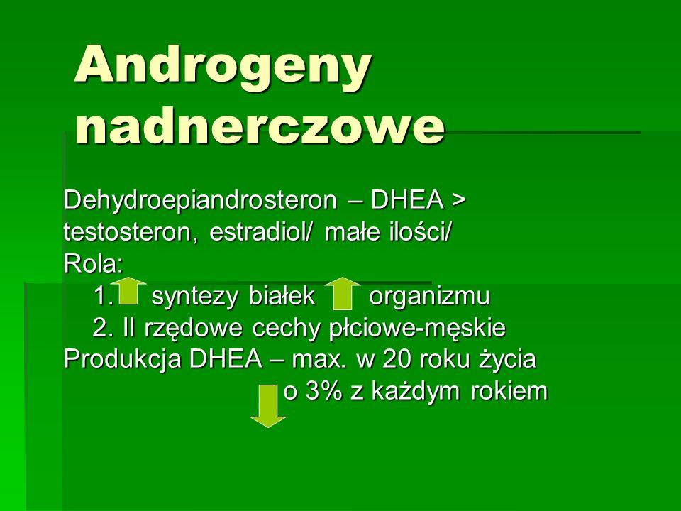 Androgeny nadnerczowe Dehydroepiandrosteron – DHEA > testosteron, estradiol/ małe ilości/ Rola: 1.