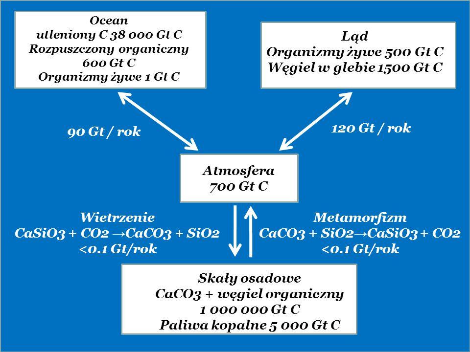 se Atmosfera 700 Gt C Skały osadowe CaCO3 + węgiel organiczny 1 000 000 Gt C Paliwa kopalne 5 000 Gt C Ocean utleniony C 38 000 Gt C Rozpuszczony orga