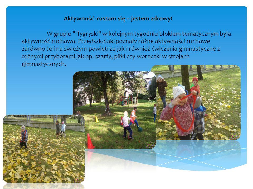 Pomocny w przybliżeniu dzieciom omawianej tematyki był zaproszony do przedszkola gość- sportowiec, który opowiedział dzieciom o korzyściach płynących z aktywności ruchowej.