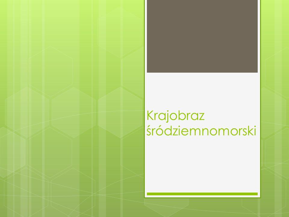 Wykonała: -Zuzanna Krzynowek. Kl. VI,,a
