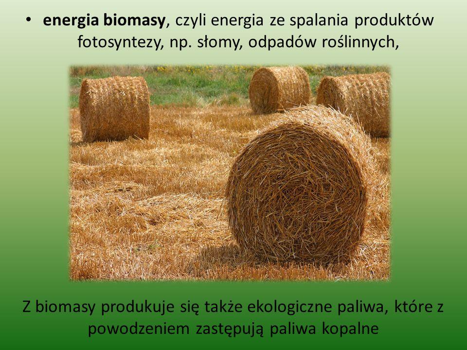 energia biomasy, czyli energia ze spalania produktów fotosyntezy, np. słomy, odpadów roślinnych, Z biomasy produkuje się także ekologiczne paliwa, któ