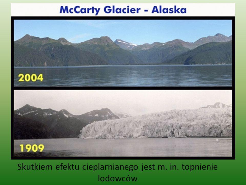 Skutkiem efektu cieplarnianego jest m. in. topnienie lodowców