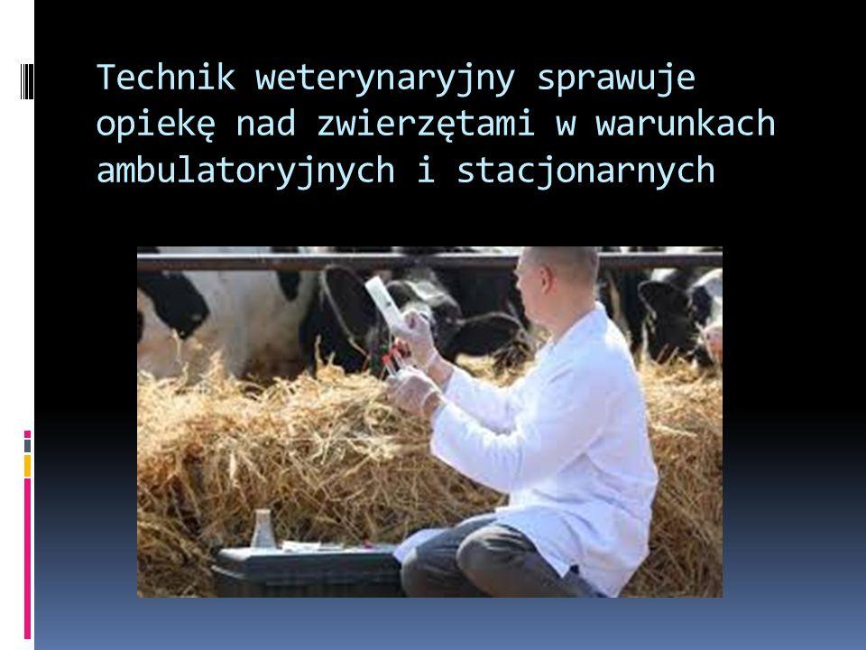 3) organizowanie i wykonywanie prac związanych z przetwórstwem spożywczym, usługami i handlem