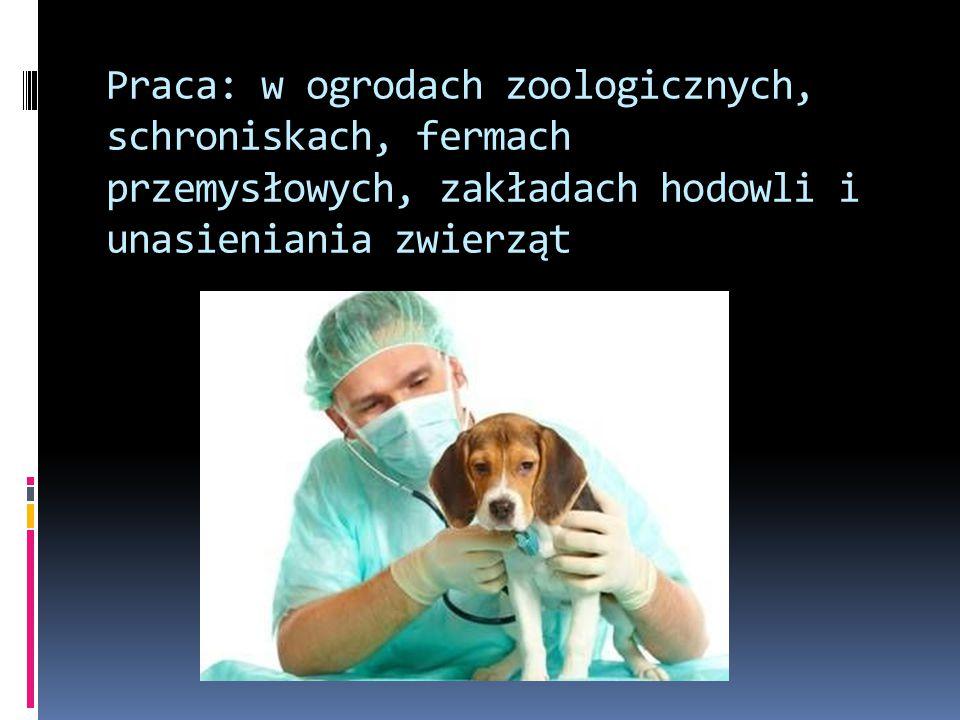 Przedmioty w kształceniu praktycznym  Anatomia i fizjologia zwierząt w praktyce  Prowadzenie produkcji zwierzęcej i usług inseminacyjnych  Zabiegi weterynaryjne  Analityka weterynaryjna  Kontrola i nadzór weterynaryjny