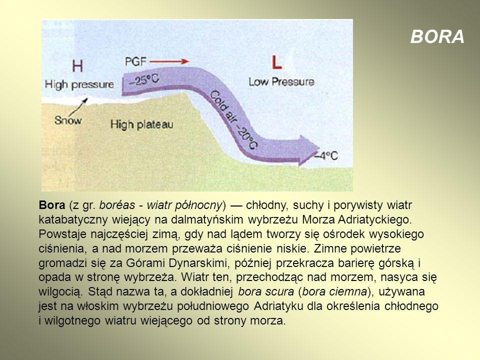 Bora (z gr. boréas - wiatr północny) — chłodny, suchy i porywisty wiatr katabatyczny wiejący na dalmatyńskim wybrzeżu Morza Adriatyckiego. Powstaje na