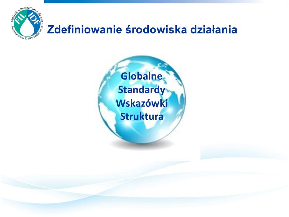 Zdefiniowanie środowiska działania Globalne Standardy Wskazówki Struktura