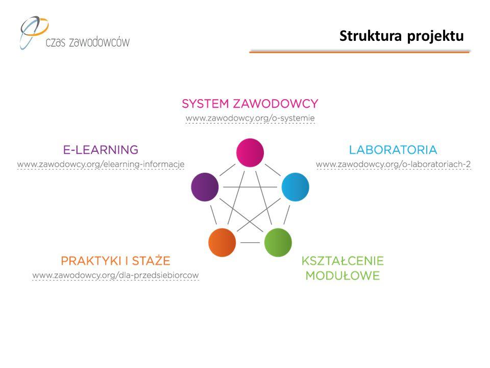 Dokładnie 68 szkół współpracujących w ramach projektu, w tym 35 szkół objętych kształceniem modułowym.
