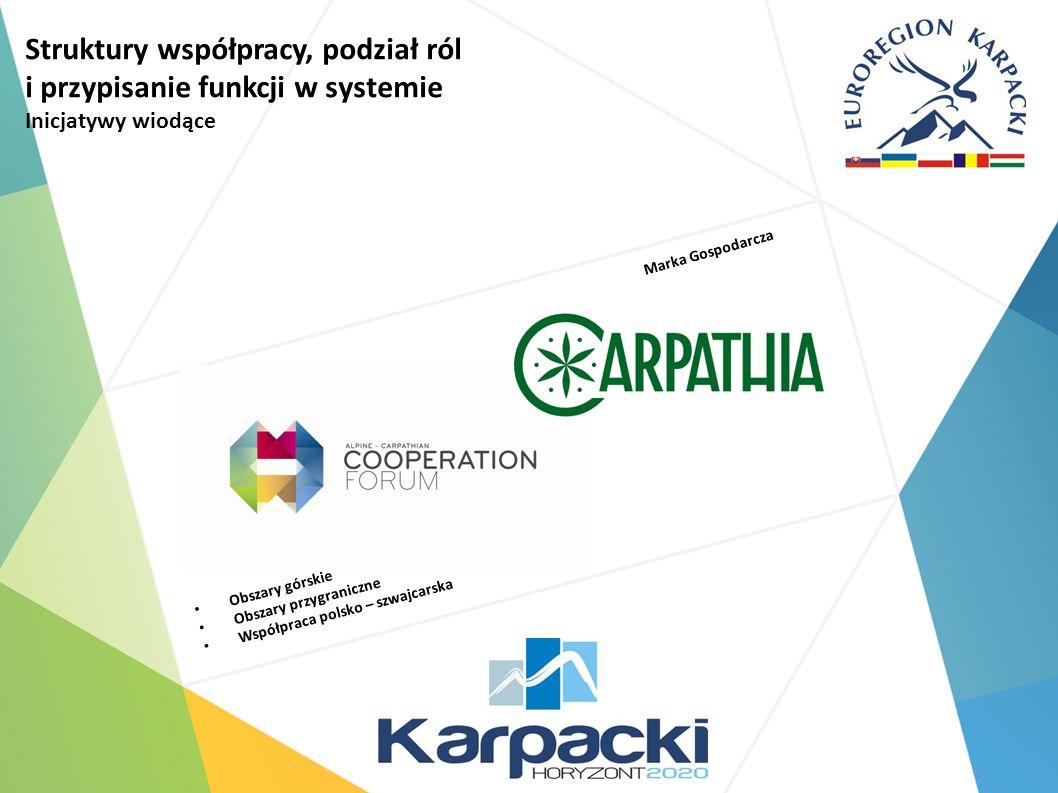 Struktury współpracy, podział ról i przypisanie funkcji w systemie Inicjatywy wiodące Obszary górskie Obszary przygraniczne Współpraca polsko – szwajcarska Marka Gospodarcza
