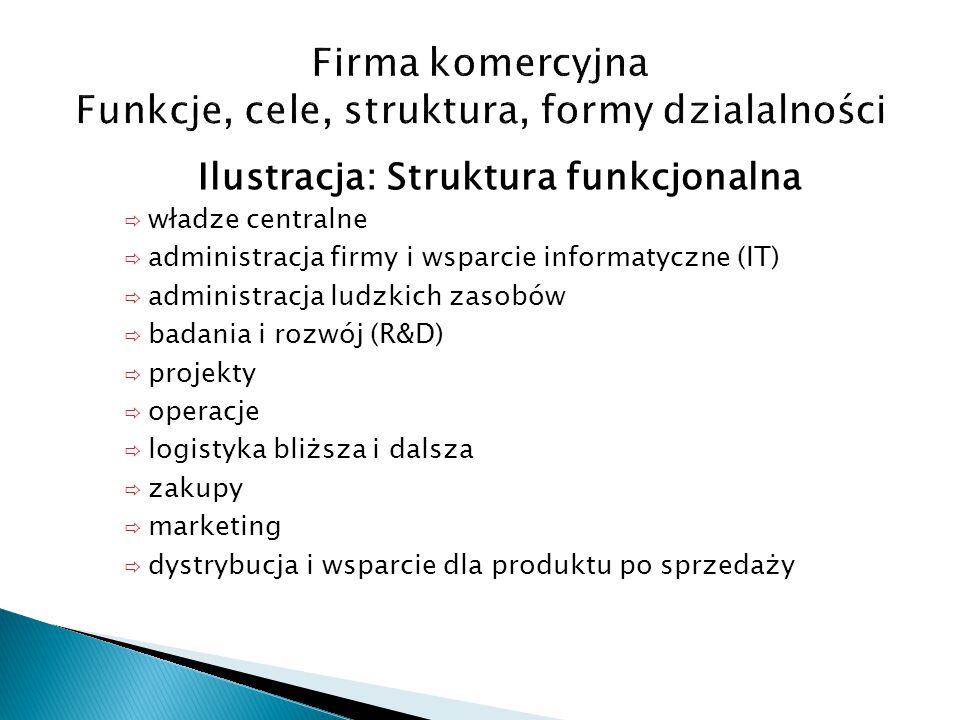 Ilustracja: Struktura funkcjonalna  władze centralne  administracja firmy i wsparcie informatyczne (IT)  administracja ludzkich zasobów  badania i