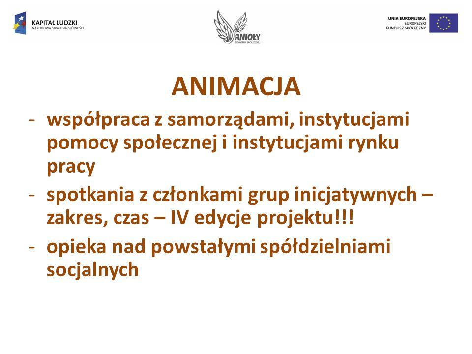 ANIMACJA -współpraca z samorządami, instytucjami pomocy społecznej i instytucjami rynku pracy -spotkania z członkami grup inicjatywnych – zakres, czas