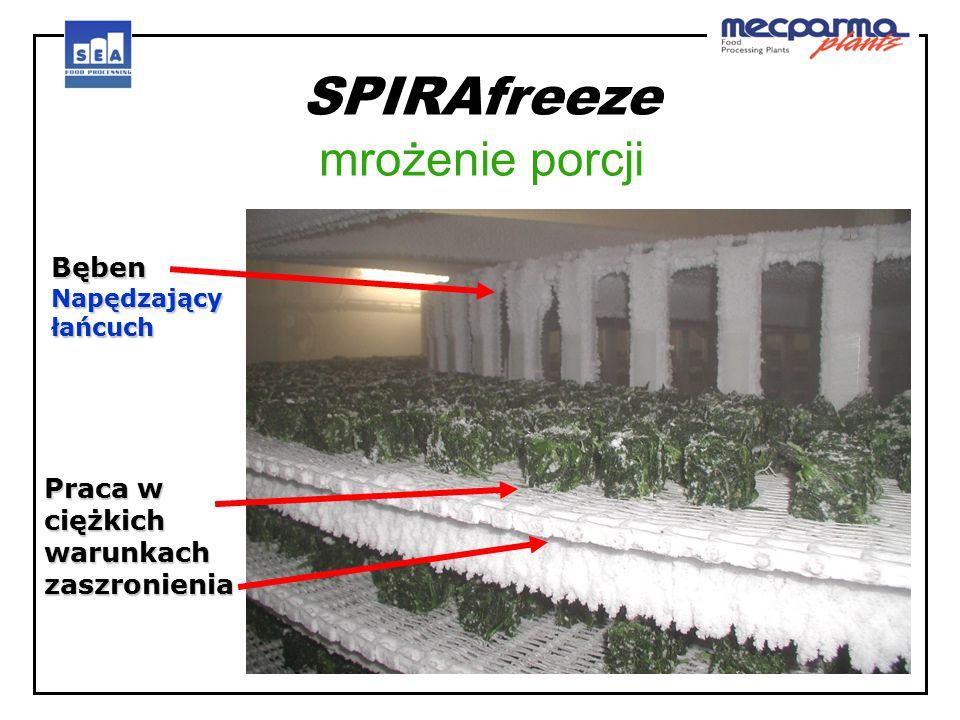 SPIRAfreeze mrożenie porcji Bęben Napędzający łańcuch Praca w ciężkich warunkach zaszronienia