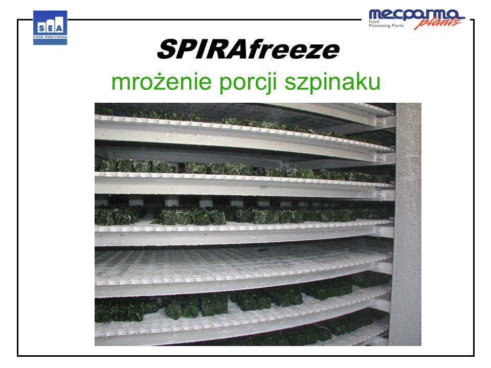 SPIRAfreeze mrożenie porcji szpinaku