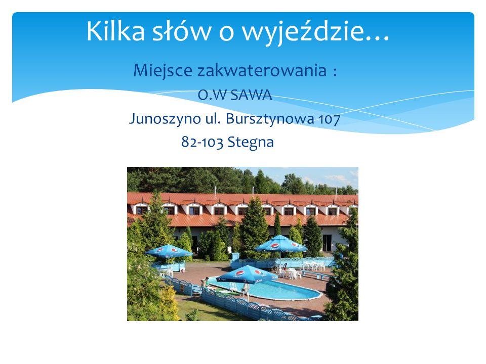 Miejsce zakwaterowania : O.W SAWA Junoszyno ul. Bursztynowa 107 82-103 Stegna Kilka słów o wyjeździe…