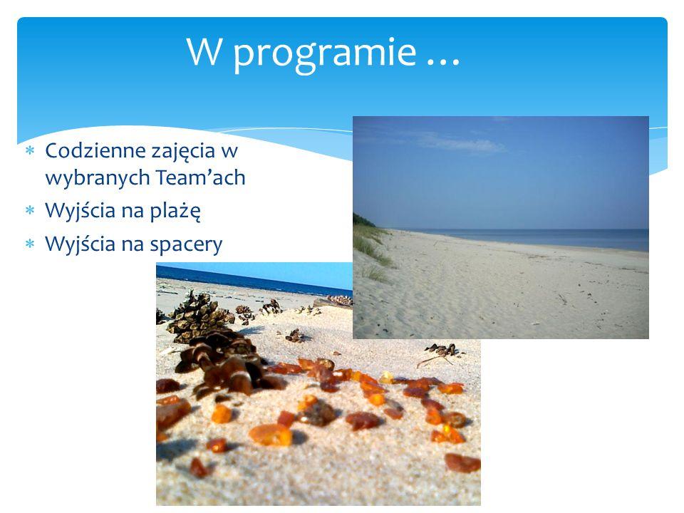  Codzienne zajęcia w wybranych Team'ach  Wyjścia na plażę  Wyjścia na spacery W programie …