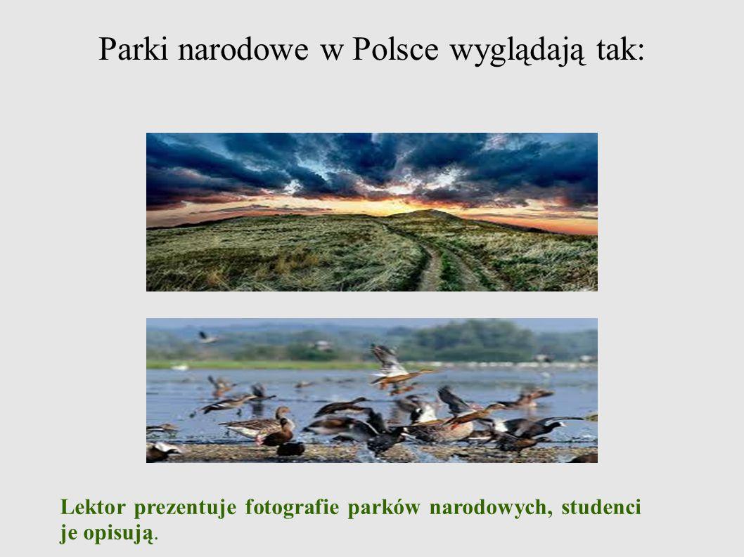 Parki narodowe w Polsce wyglądają tak: Lektor prezentuje fotografie parków narodowych, studenci je opisują.