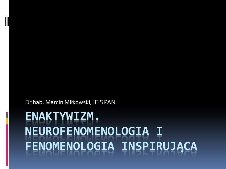 Dr hab. Marcin Miłkowski, IFiS PAN