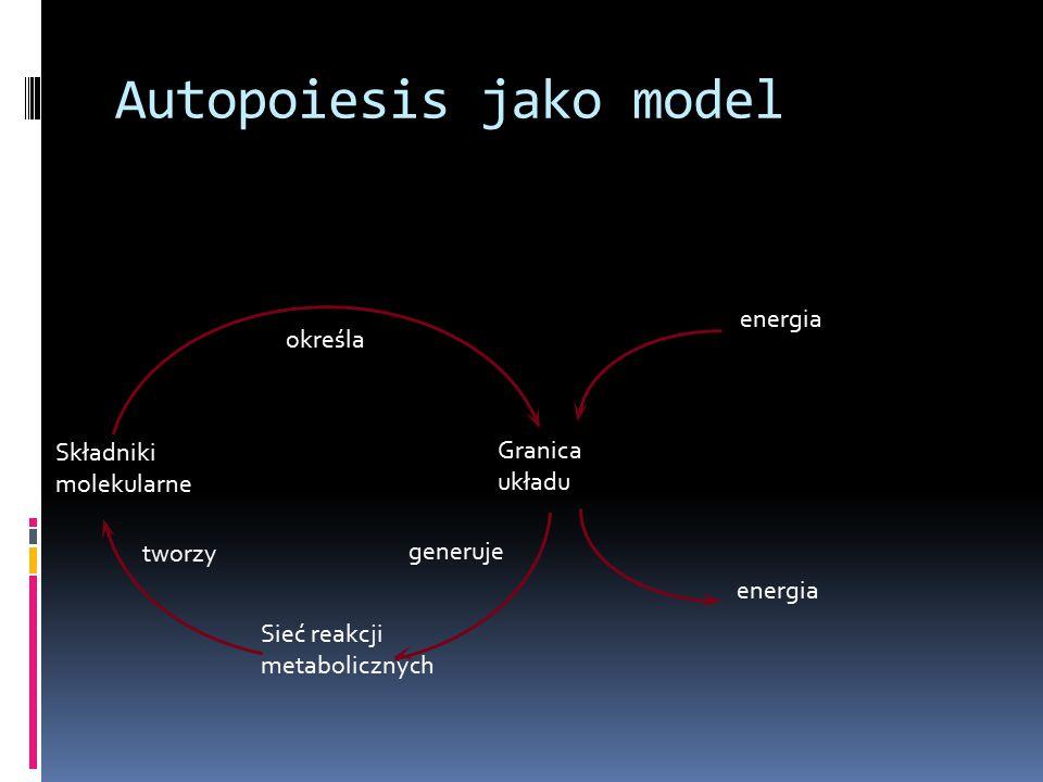 Składniki molekularne Granica układu tworzy generuje określa energia Sieć reakcji metabolicznych Autopoiesis jako model