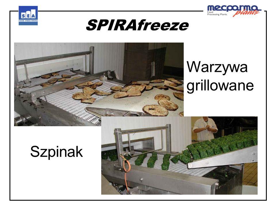 SPIRAfreeze SFC..wersja kompaktowa Rama nośna