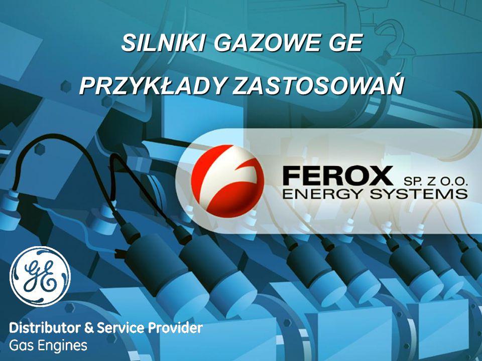 Autoryzowany dystrybutor Autoryzowany serwis + 15 lat doświadczenia + 50 zainstalowanych silników gazowych + 100 kontraktów serwisowych