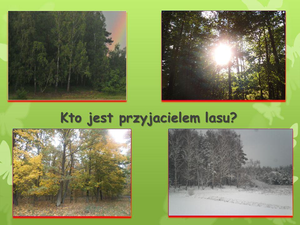 Leśniczy- przyjaciel lasu Jednymi z przyjaciół lasu są leśnicy.