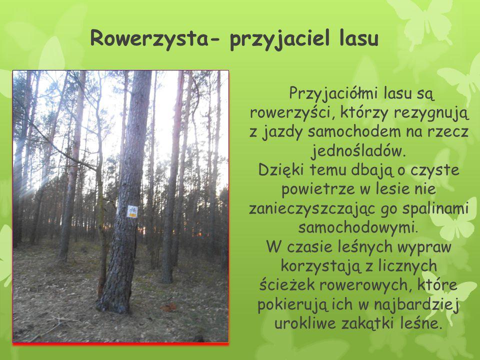Każdy z nas przyjacielem lasu Wszyscy powinniśmy dbać o zielone płuca Ziemi.
