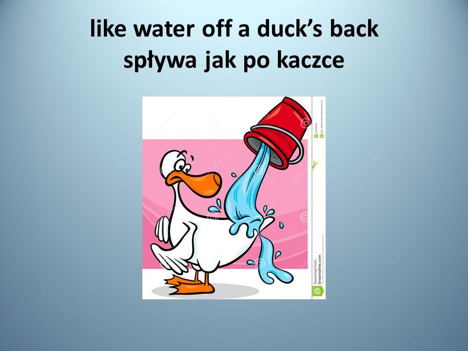 like water off a duck's back spływa jak po kaczce