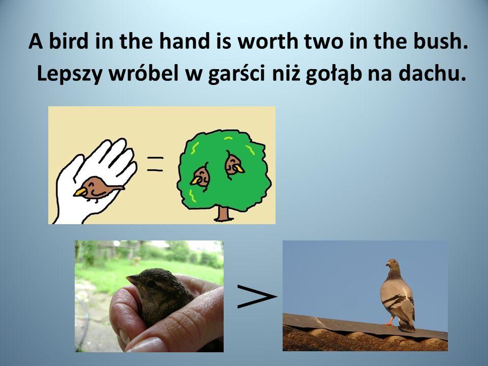 A bird in the hand is worth two in the bush. Lepszy wróbel w garści niż gołąb na dachu.