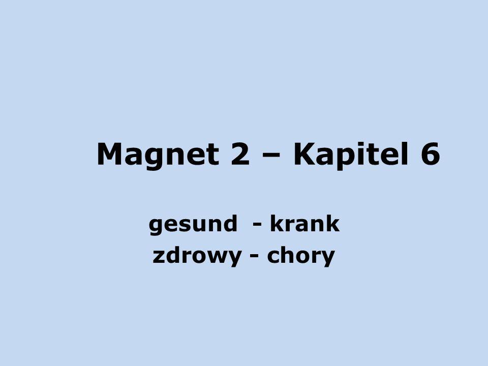 Magnet 2 – Kapitel 6 gesund - krank zdrowy - chory
