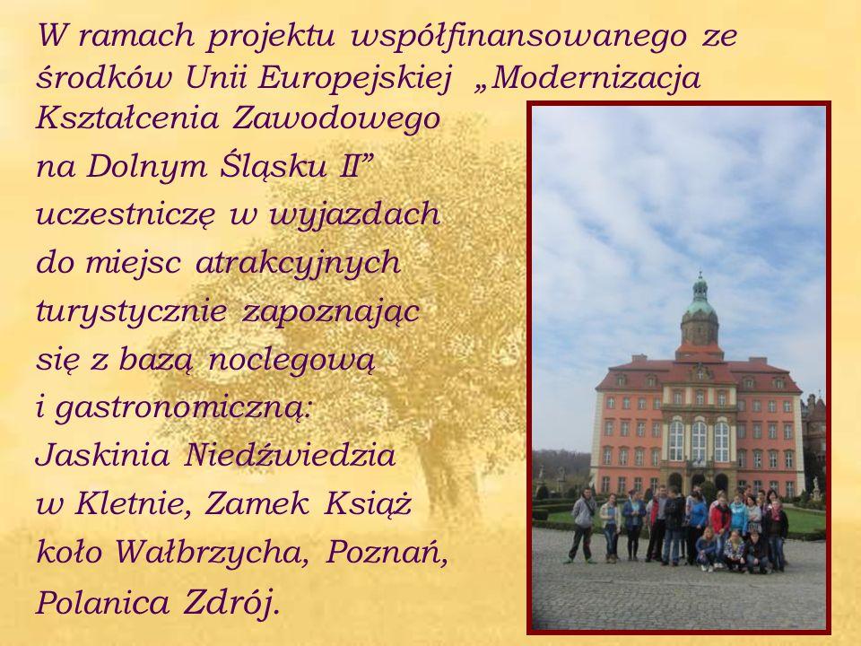 """W ramach projektu współfinansowanego ze środków Unii Europejskiej """"Modernizacja Kształcenia Zawodowego na Dolnym Śląsku II"""" uczestniczę w wyjazdach do"""