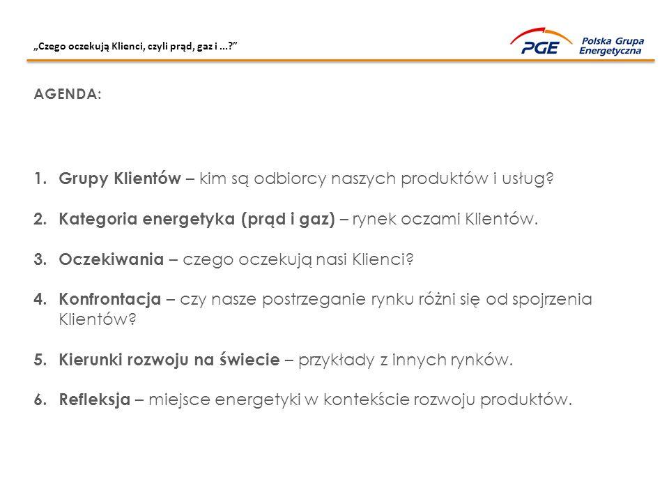 """""""Czego oczekują Klienci, czyli prąd, gaz i...?"""" 1. Grupy Klientów – kim są odbiorcy naszych produktów i usług? 2. Kategoria energetyka (prąd i gaz) –"""