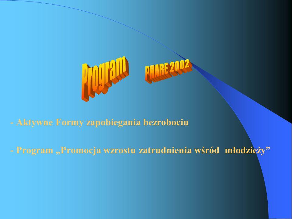 """- Aktywne Formy zapobiegania bezrobociu - Program """"Promocja wzrostu zatrudnienia wśród młodzieży"""