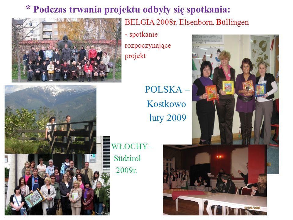 * Podczas trwania projektu odbyły się spotkania: partnerskie: BELGIA 2008r.