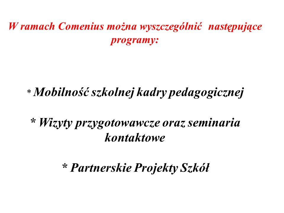 W ramach Comenius można wyszczególnić następujące programy: * Mobilność szkolnej kadry pedagogicznej * Wizyty przygotowawcze oraz seminaria kontaktowe * Partnerskie Projekty Szkół