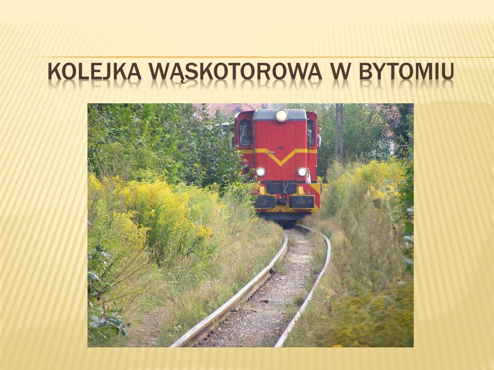 Każda z polskich kolejek wąskotorowych jest wyjątkowa: jedna ma najmniejszy rozstaw torów, inna całe lata stanowiła jedyną nić łączącą jakieś miasto z resztą świata.