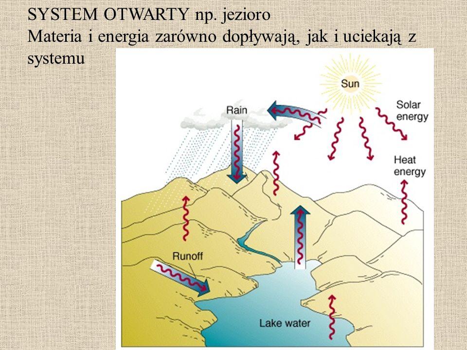 SYSTEM OTWARTY np. jezioro Materia i energia zarówno dopływają, jak i uciekają z systemu